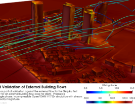 External Aerodynamics of Building Flows
